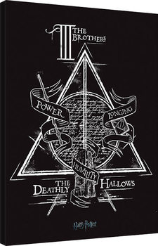 Vászonkép  Harry Potter - Deathly Hallows