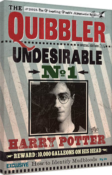Vászonkép  Harry Potter - Quibbler