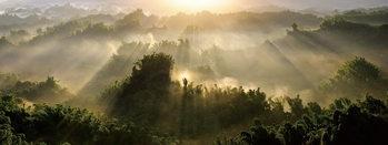 Γυάλινη τέχνη View of the Forest with Sunbeams