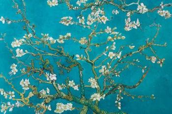 Vincent van Gogh - almond blossom san ramy 1890 - плакат (poster)