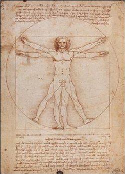 Vitruvian Man Festmény reprodukció