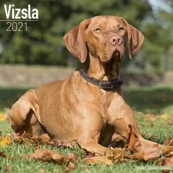 Ημερολόγιο 2021 Vizsla
