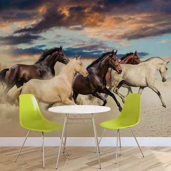 Chevaux Poster Mural