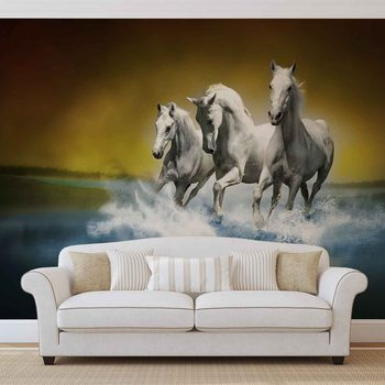 Les chevaux Poster Mural