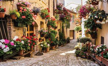 Méditerranée  Fleurs Poster Mural