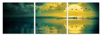 Wandbilder Sun welcoming - birds