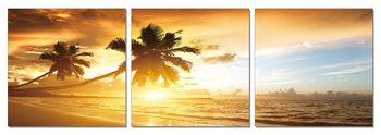 Wandbilder Sunset on the beach