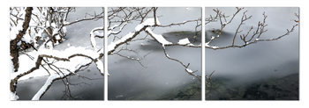 Winter Snapshot Modern tavla