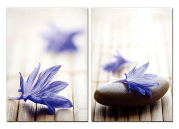 Τοποθετημένη εκτύπωση έργου τέχνης Zen - Blue Blossom