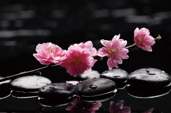 Γυάλινη τέχνη Zen - Pink Orchid 2