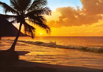PACIFIC SUNSET Фото-тапети