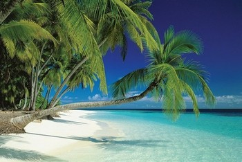 Maledives - плакат