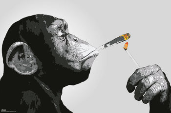 Steez - Monkey Smoking - плакат