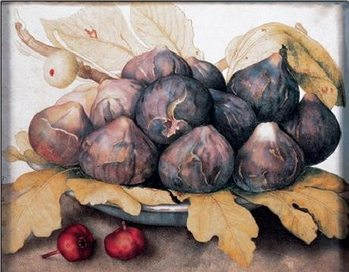 A Plate of Figs, 1662 Festmény reprodukció