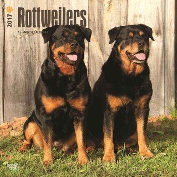 Calendario 2017 Rottweilers