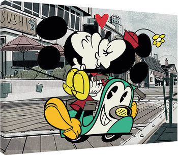 Mickey Shorts - Mickey and Minnie canvas