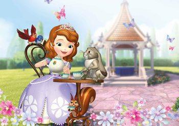 Carta da parati Disney Sofia prima