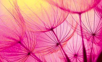 Carta da parati Flower Dandelion