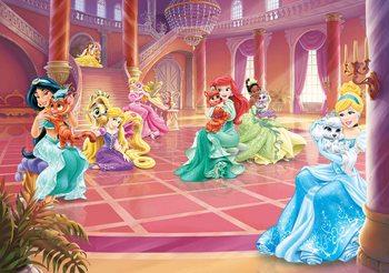 Carta da parati Principesse Disney Cenerentola Jasmine