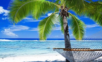 Carta da parati Spiaggia Sabbia Palme Amaca