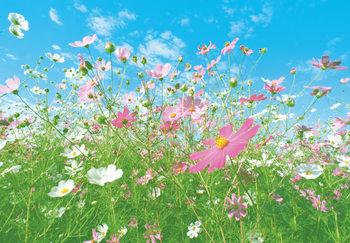 FLOWER MEADOW Fotobehang