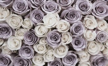 Roses Flowers Purple White Fotobehang