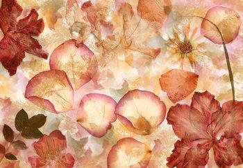 Blommor Fototapet