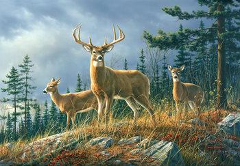 Az őszi erdő állatai Fali tapéta