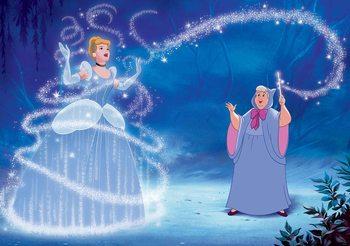 Disney Princesses Cinderella Fali tapéta