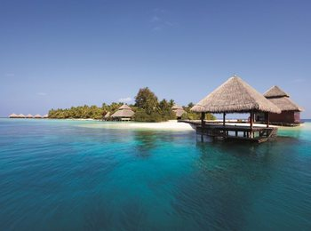 Paradise Island Fali tapéta
