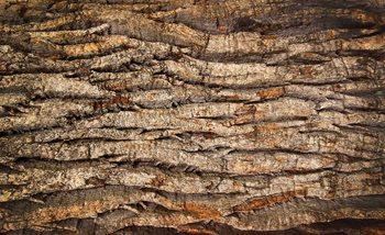 Tree Bark Fali tapéta