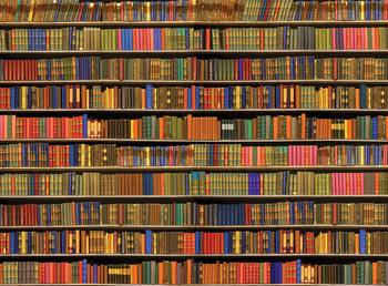Bücherregal - Colored Fototapete