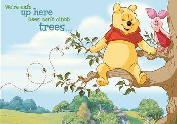 Disney Winnie Pu Bär Ferkel Fototapete