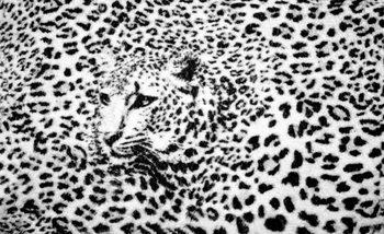 Leopard Schwarz Weiß Fototapete