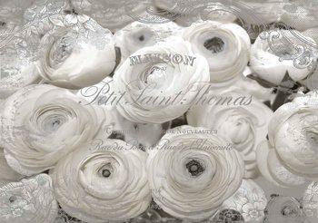 Weiße Rosen Vintage-Effekt Fototapete
