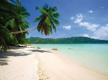 Sunny Beach Fototapet