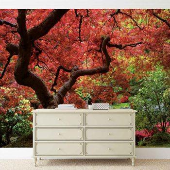 Fototapeta Květiny Lesní příroda