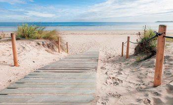 Ścieżka Plaża Piasek Przyroda Fototapeta