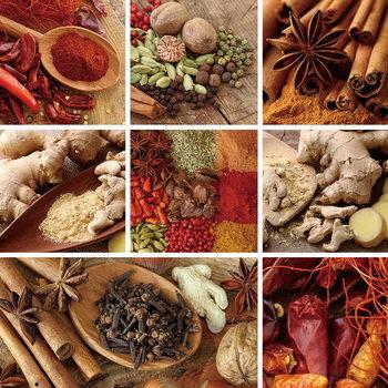 Glasbilder Spice - Collage