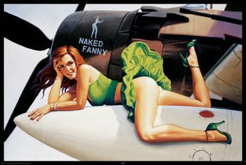 Hildebrandt - naked fanny - плакат (poster)