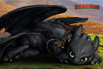 How to Train Your Dragon 2 - Toothless - плакат (poster)