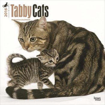 Kalendář 2017 Kočky 3
