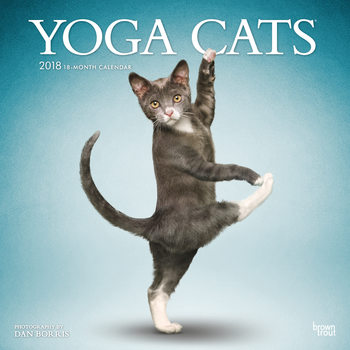 Kalendár 2018 Yoga Cats