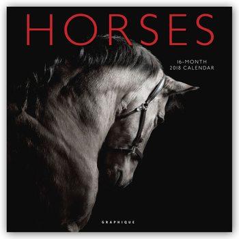 Horses Kalendar 2018