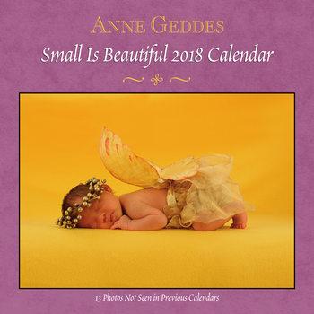 Anne Geddes - Small is Beautiful Kalendarz 2018