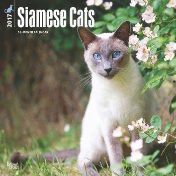 Siamese Cats Kalendarz 2017
