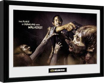 The Walking Dead - Glenn Attack Poster enmarcado