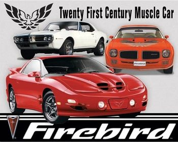 Metallschild Pontiac Firebird Tribute