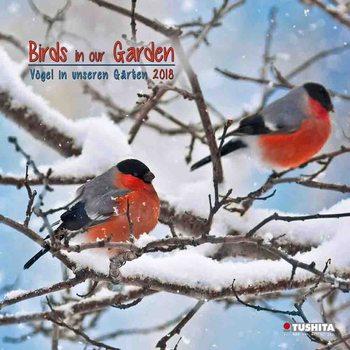 Birds in our Garden naptár 2018