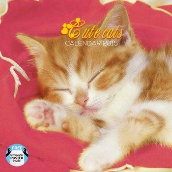 Macskák naptár 2017